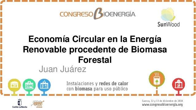 Economía Circular en la Energía Renovable procedente de Biomasa Forestal Juan Juárez