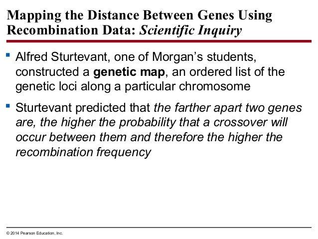biology in focus chapter 12 rh slideshare net Outline Examples Writing Outline