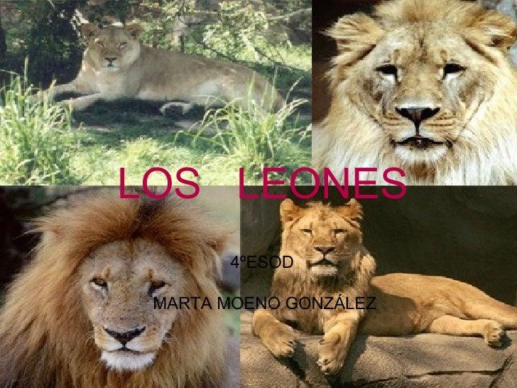 4ºESOD  MARTA MOENO GONZÁLEZ LOS  LEONES