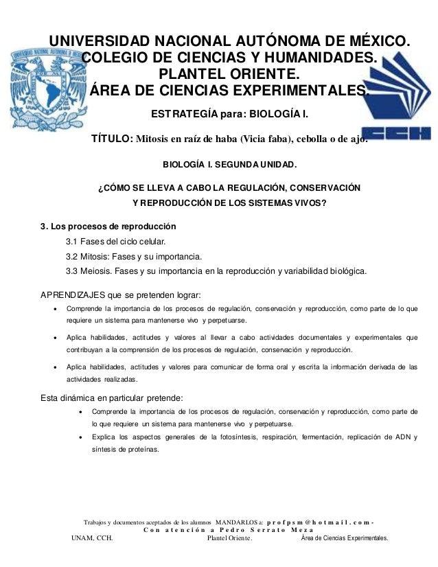 Trabajos y documentos aceptados de los alumnos MANDARLOS a: p r o f p s m @ h o t m a i l . c o m - C o n a t e n c i ó n ...