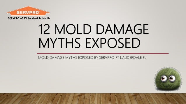 12 MOLD DAMAGE MYTHS EXPOSED MOLD DAMAGE MYTHS EXPOSED BY SERVPRO FT LAUDERDALE FL