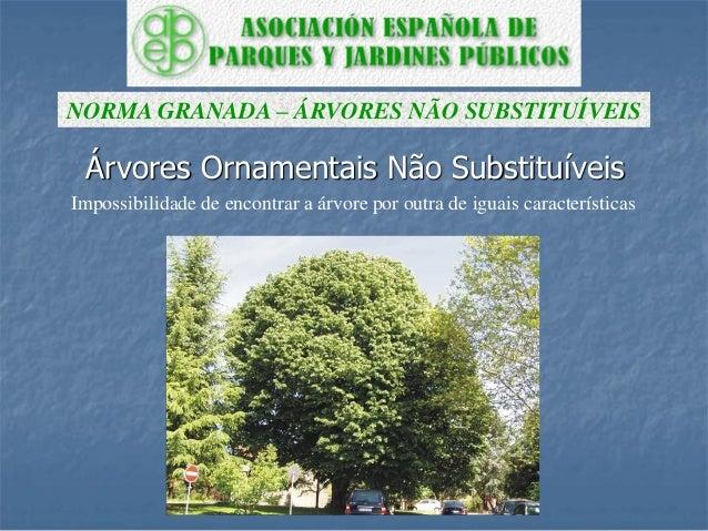Árvores Ornamentais Não Substituíveis NORMA GRANADA – ÁRVORES NÃO SUBSTITUÍVEIS Impossibilidade de encontrar a árvore por ...