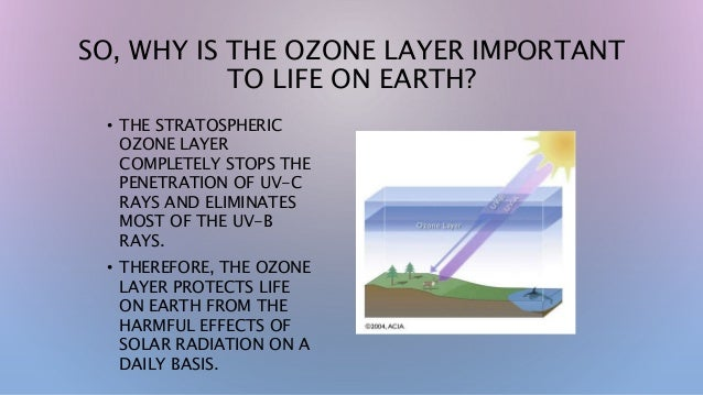 ozone layer deflation This will cause humans suffering like skin cancer and uv radiation may kill plankton cfcs will also cause global warming we should take action to protect our ozone layer.