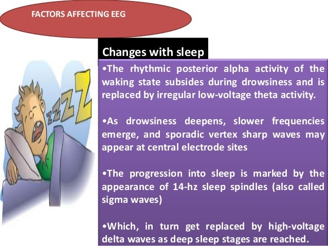 FACTORS AFFECTING EEG  Changes with sleep •The rhythmic posterior alpha activity of the waking state subsides during drows...
