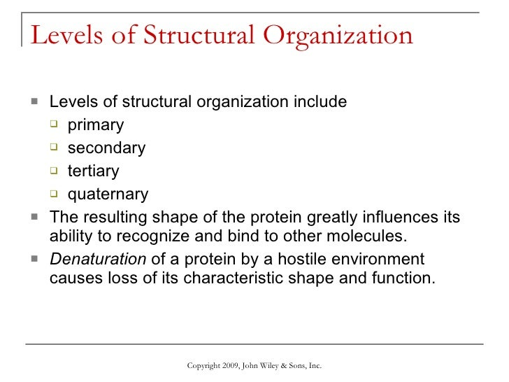 chemical level of organization Level of structural organization 1 levels of structural organization 2 living things consists of several levels of structural organization that are associated with one another in various ways 3 chemical level it is the lowest level of organization it includes atoms and molecules that are essential in maintaining life 4.