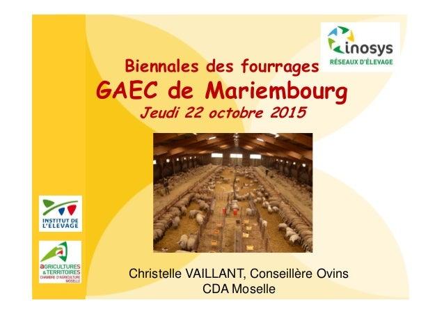 Biennales des fourrages GAEC de Mariembourg Jeudi 22 octobre 2015 Christelle VAILLANT, Conseillère Ovins CDA Moselle