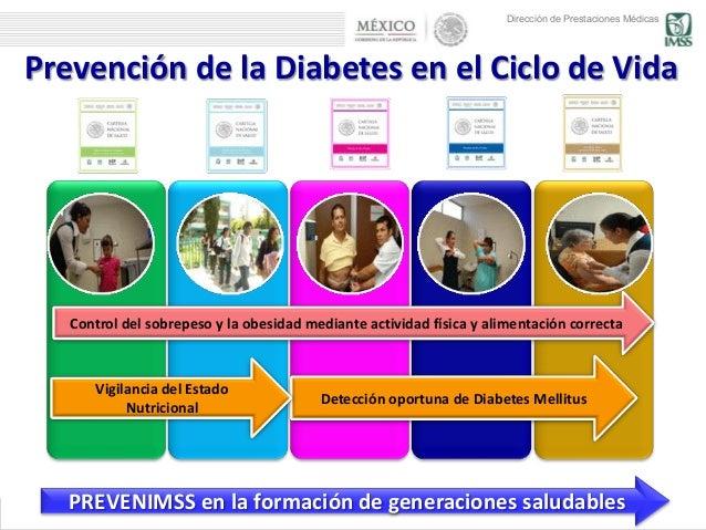 Modelo de prevención en diabetes mellitus (PREVENIMSS)