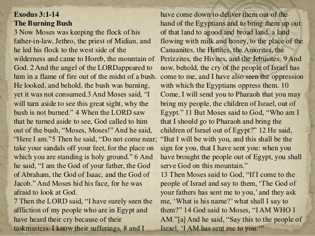 exodus exegesis Study exodus 3 using matthew henry's bible commentary (concise) to better understand scripture with full outline and verse meaning.