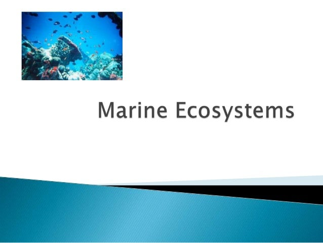   To differentiate between different types of    marine ecosystems   To locate real-world examples of different    mari...