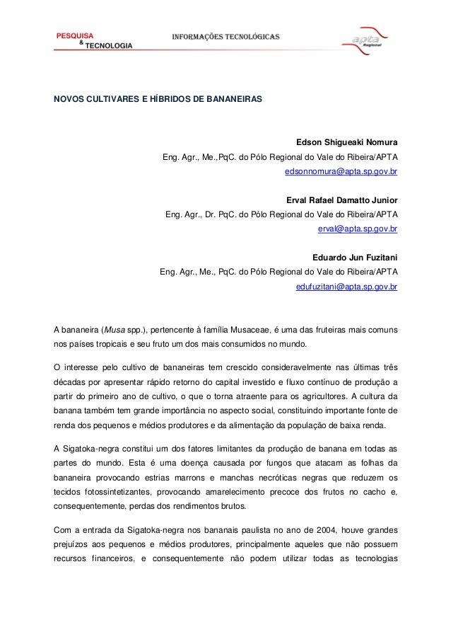 NOVOS CULTIVARES E HÍBRIDOS DE BANANEIRAS Edson Shigueaki Nomura Eng. Agr., Me.,PqC. do Pólo Regional do Vale do Ribeira/A...