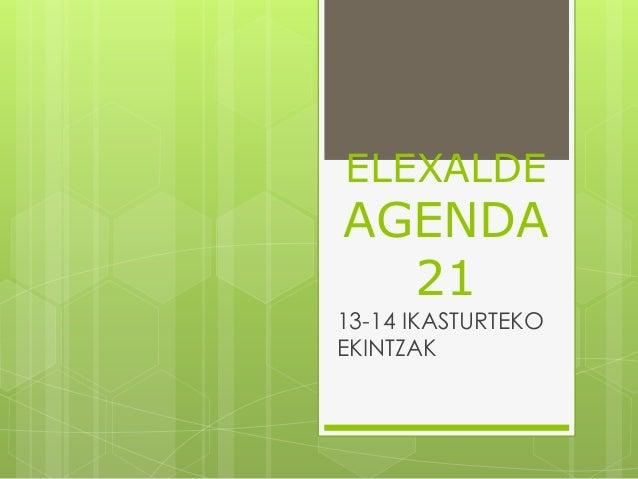 ELEXALDE AGENDA 21 13-14 IKASTURTEKO EKINTZAK