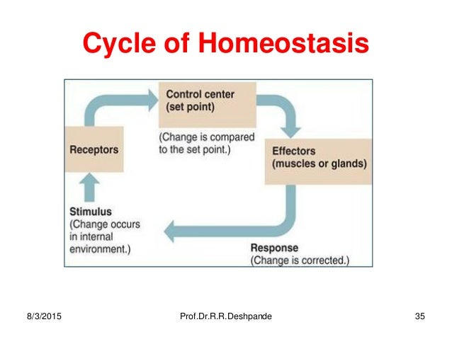 Homeostasis,cell physiology -- By Prof.Dr.R.R.Deshpande