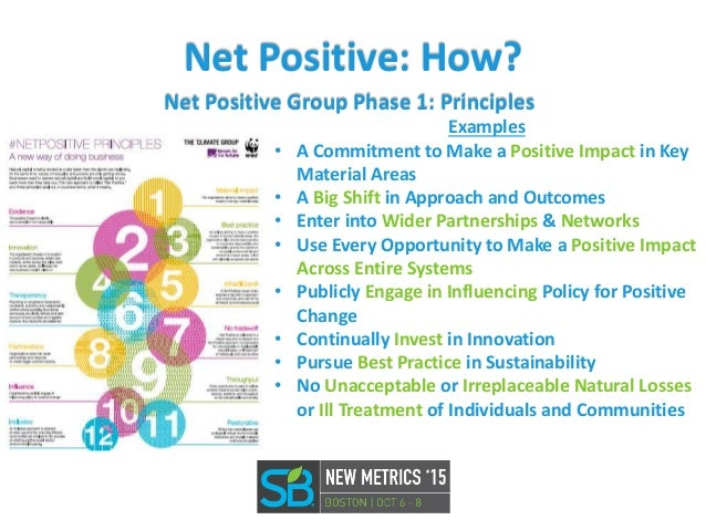 The Path to Net Positive: Prin...