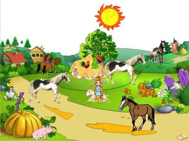  Редовно доят млякото и събират яйцата.  Чистят ги.  Стрижат овцете.