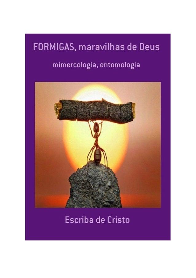 Formigas, Maravilhas de Deus, por: Escriba de Cristo FINALIDADE DESTA OBRA Os materiais literários do autor não têm fins l...
