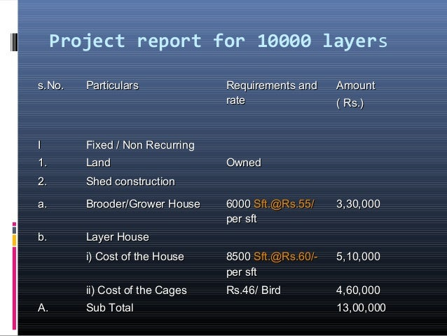 13  project report for 10000 layers