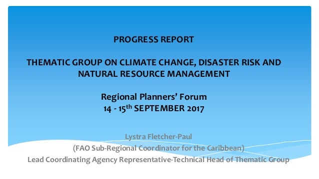 PROGRESS REPORT THEMATIC GROUP ON CLIMATE CHANGE, DISASTER RISK AND NATURAL RESOURCE MANAGEMENT Regional Planners' Forum 1...