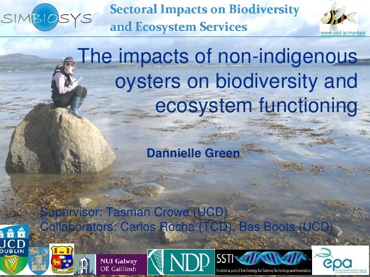 www.ucd.ie/marbee      The impacts of non-indigenous         oysters on biodiversity and             ecosystem functioning...