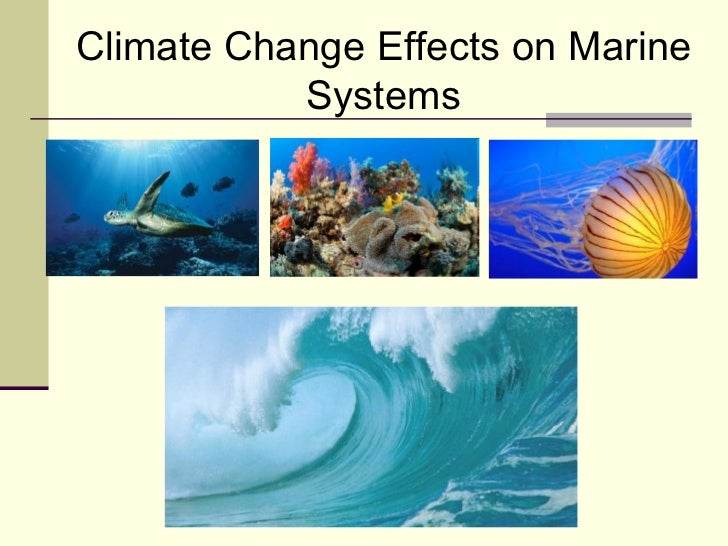 Climate Change Effects on Marine Systems