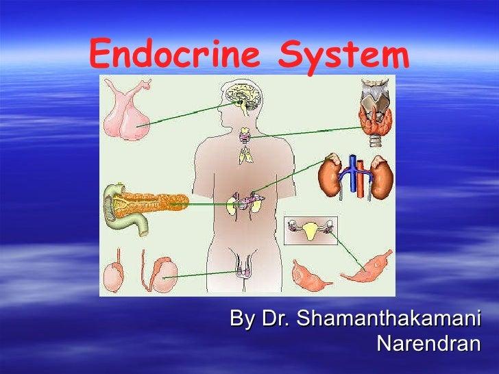 Endocrine System By Dr. Shamanthakamani Narendran