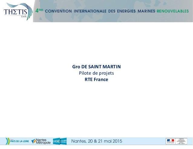 Gro DE SAINT MARTIN Pilote de projets RTE France