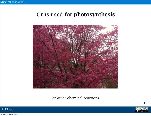 Spectral response                          Or is used for photosynthesis                               or other chemical r...