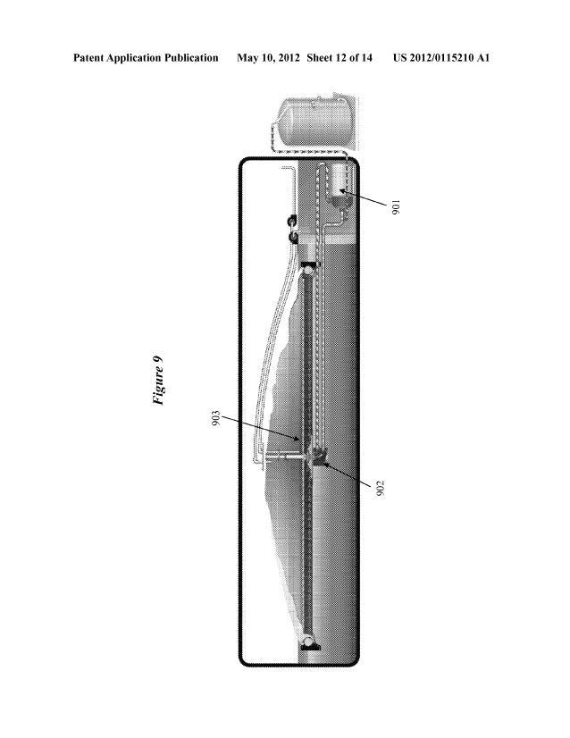 US20120115210