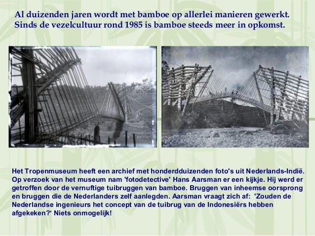 Al duizenden jaren wordt met bamboe op allerlei manieren gewerkt.Sinds de vezelcultuur rond 1985 is bamboe steeds meer in ...