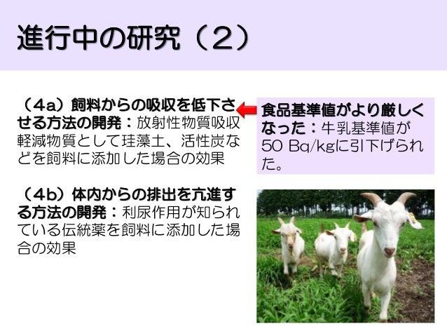 2013.3.16シンポジウム資料_眞鍋...