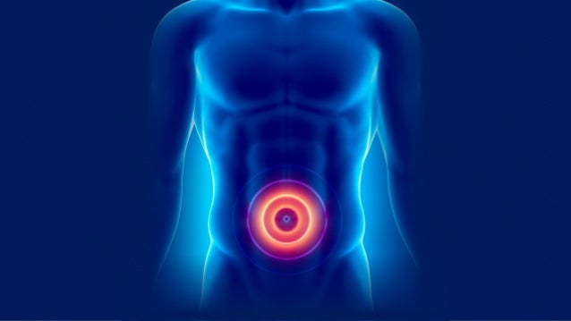 Holistic Gut Healing Protocol