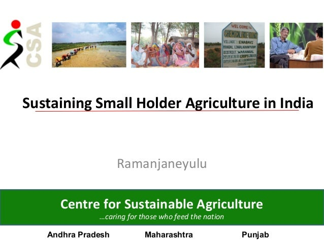 Sustaining Small Holder Agriculture in IndiaRamanjaneyuluCentre for Sustainable Agriculture…caring for those who feed the ...