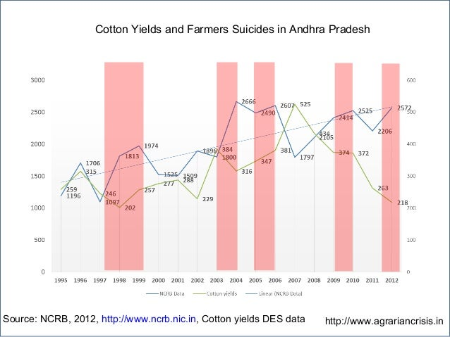 Cotton Yields and Farmers Suicides in Andhra Pradesh Source: NCRB, 2012, http://www.ncrb.nic.in, Cotton yields DES data ht...
