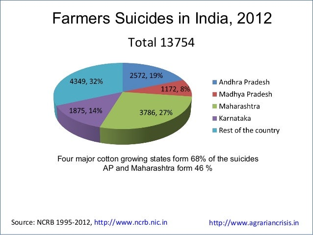 Farmers Suicides in India, 2012 Four major cotton growing states form 68% of the suicides AP and Maharashtra form 46 % Sou...