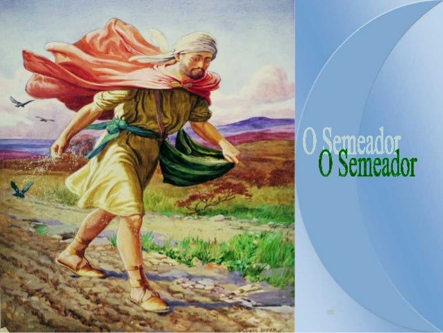 """A Liturgia desse domingo nos convida a refletir  sobre a importância da PALAVRA DE DEUS e  nos exorta a ser uma """"terra boa..."""