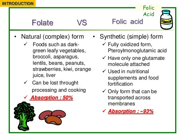 What Foods Have Folic Acid For Pregnancy