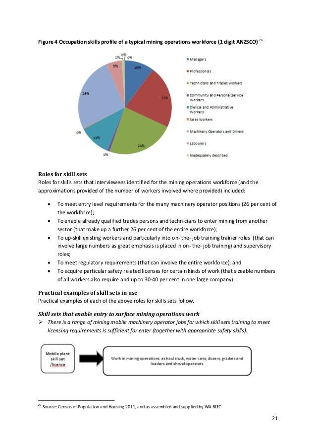 130918 ps ritc skills sets final report september 2013