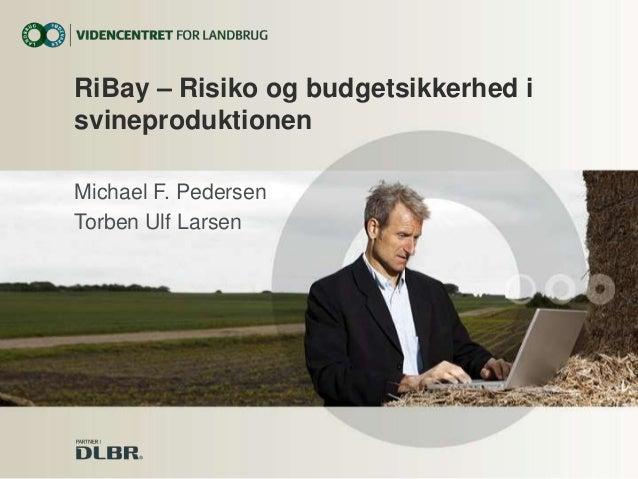 RiBay – Risiko og budgetsikkerhed i svineproduktionen Michael F. Pedersen Torben Ulf Larsen