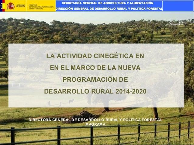 SECRETARÍA GENERAL DE AGRICULTURA Y ALIMENTACIÓN DIRECCIÓN GENERAL DE DESARROLLO RURAL Y POLITICA FORESTAL  LA ACTIVIDAD C...