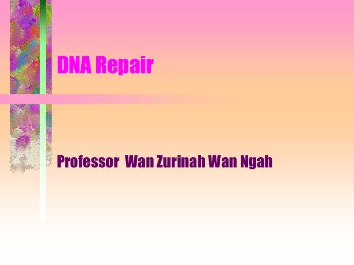 DNA RepairProfessor Wan Zurinah Wan Ngah