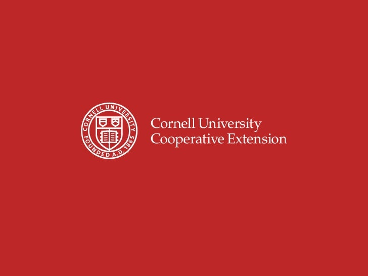 The integration of research and extension in theUSA – the experience at Cornell UniversityHelene Dillard, Ph.D.Associate D...