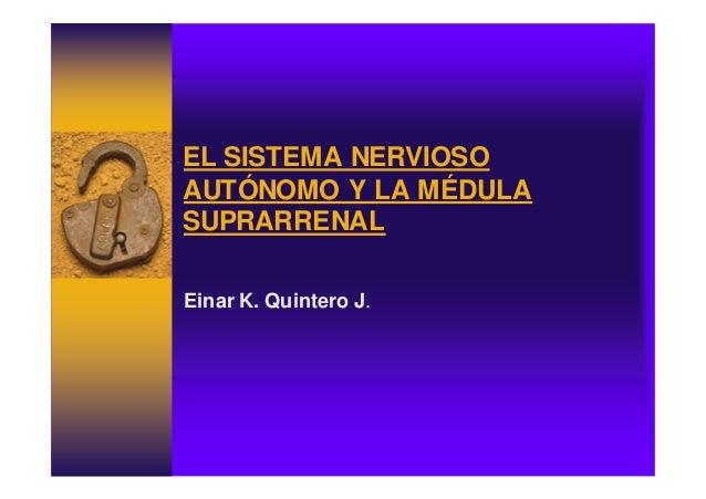 EL SISTEMA NERVIOSO AUTÓNOMO Y LA MÉDULA SUPRARRENAL Einar K. Quintero J.