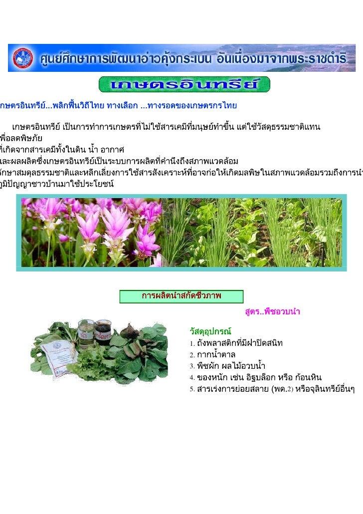 เกษตรอินทรีย์...พลิกฟื้นวิถีไทย ทางเลือก ...ทางรอดของเกษตรกรไทยเกษตรอินทรีย์ เป็นการทำการเกษตรที่ไม่ใช้สารเคมีที่ม...