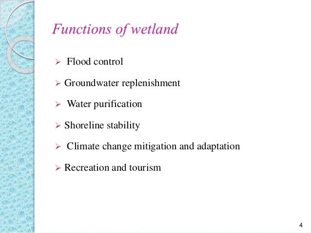 literature review on wetlands and climate Conservation and the delivery of ecosystem services a literature review kate g mcalpine and debra m wotton science for conservation 295 published by.