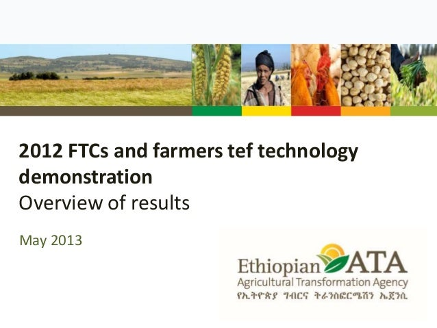 2012 FTCs and farmers tef technology demonstration Overview of results May 2013