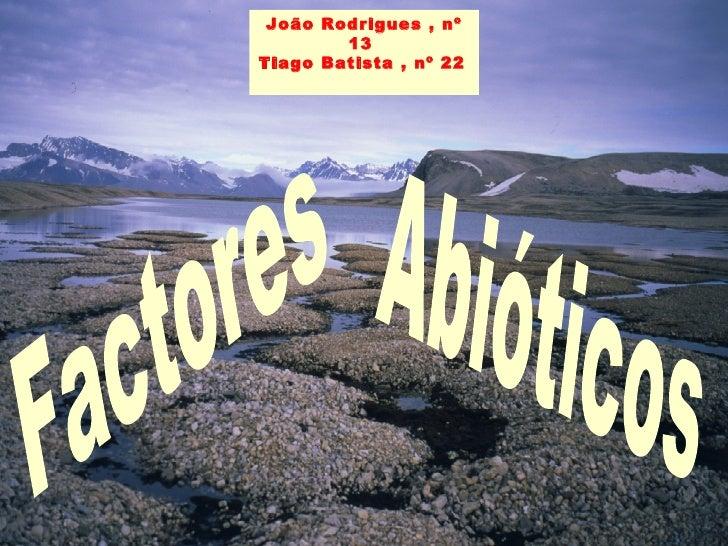 João Rodrigues , nº 13  Tiago Batista , nº 22   Factores Abióticos