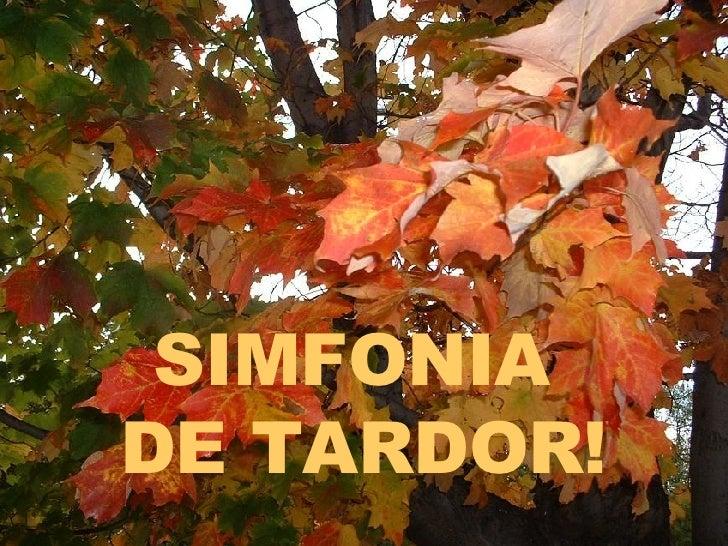SIMFONIA  DE TARDOR!