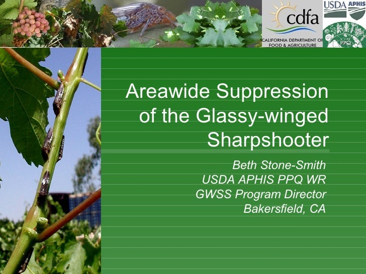 Beth Stone-Smith USDA APHIS PPQ WR GWSS Program Director Bakersfield, CA Areawide Suppression of the Glassy-winged Sharpsh...