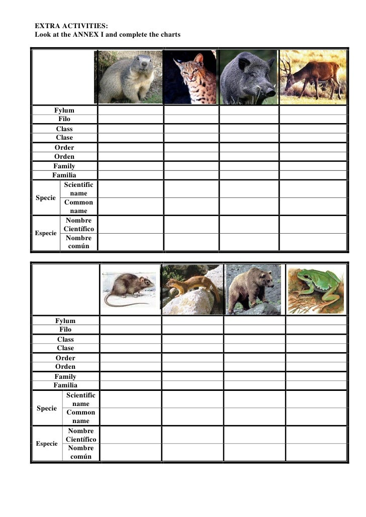 Biodiversity Worksheet Activity llamadirectory – Biodiversity Worksheet