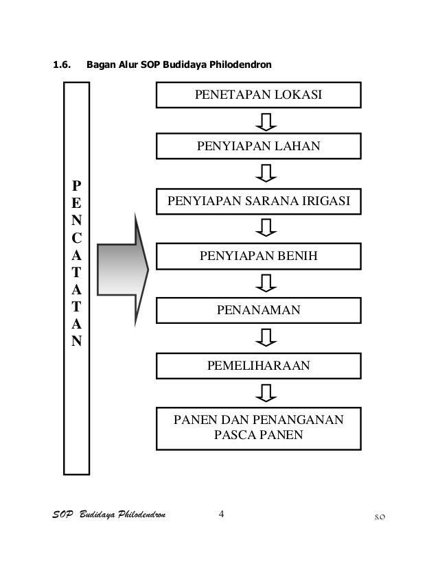 SOP Budidaya Philodendron S.O 1.6. Bagan Alur SOP Budidaya Philodendron PENETAPAN LOKASI PENYIAPAN LAHAN PENYIAPAN SARANA ...