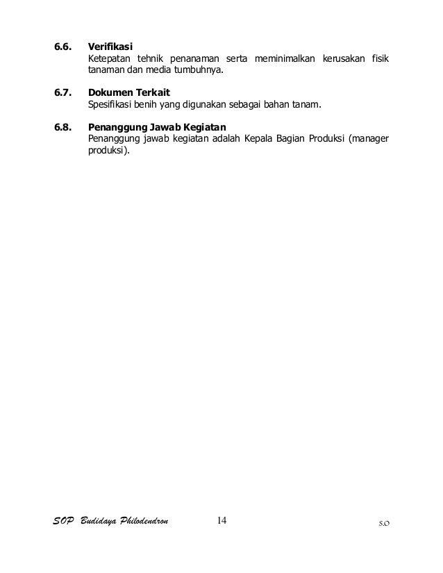 SOP Budidaya Philodendron S.O 6.6. Verifikasi Ketepatan tehnik penanaman serta meminimalkan kerusakan fisik tanaman dan me...